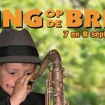 14e editie van Swing op de Brink in Muiderberg